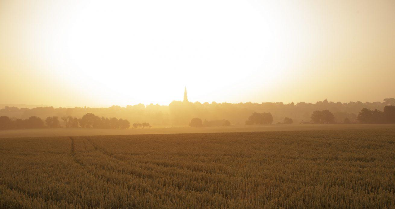 Vijlen | Zuid-Limburg